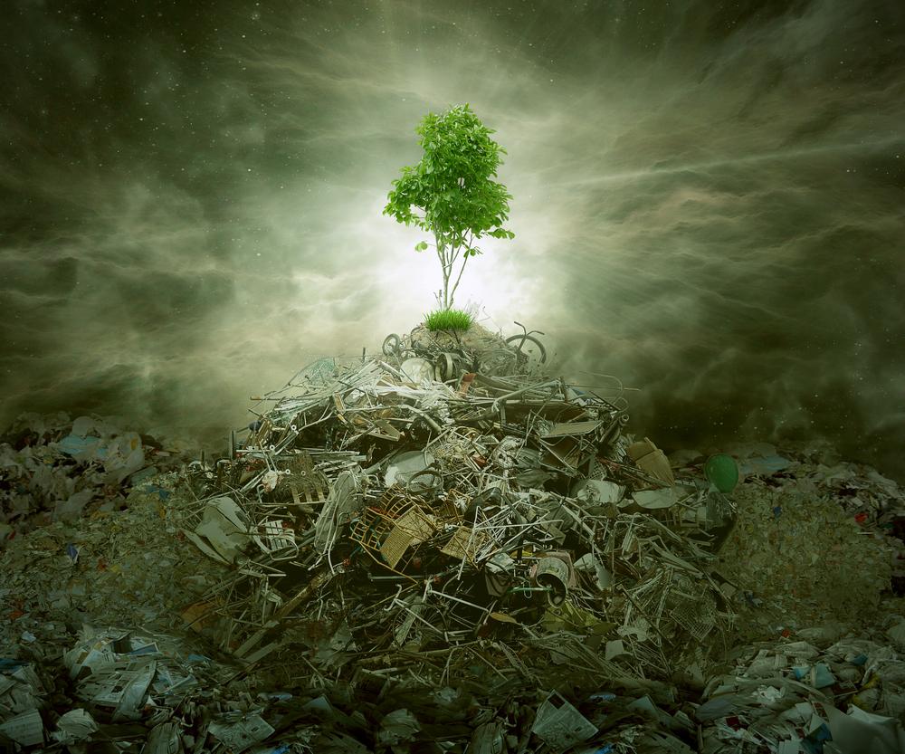 HAN Carbon Offset